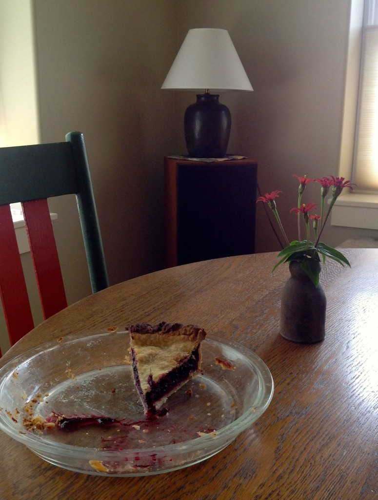All that's left of the black and red raspberry pie that I made the other day.
