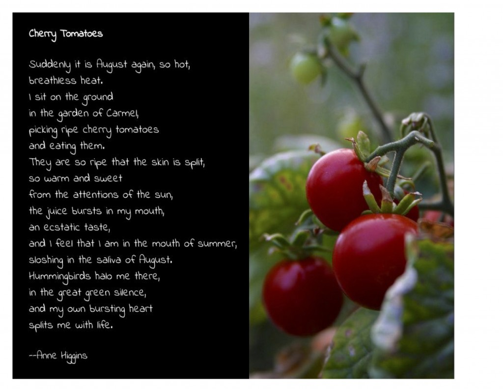 CherryTomatoes_Higgins